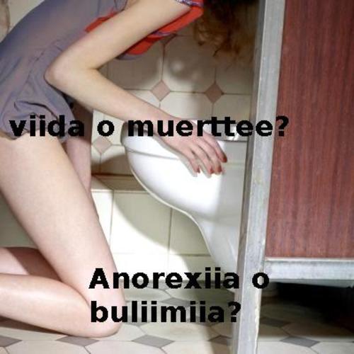 Indice del informe Anorexia y Bulimia